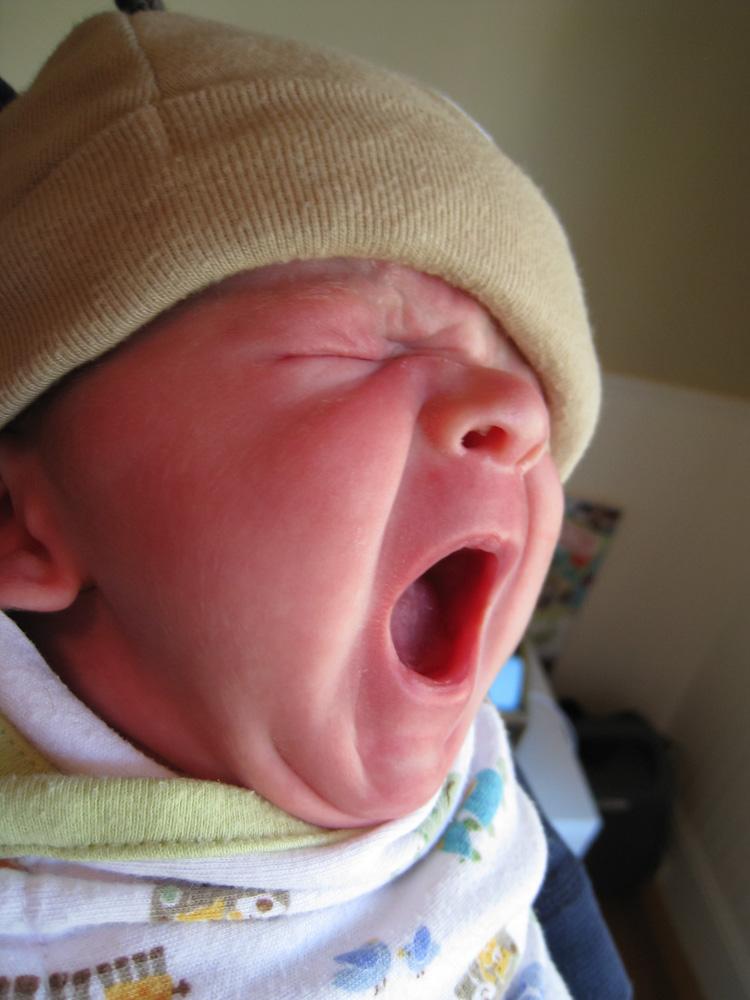 I am baby, hear me yawn