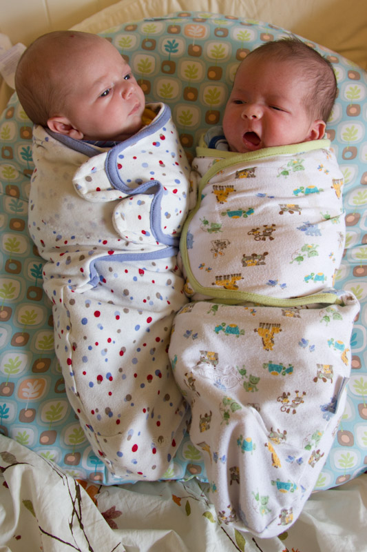 Twin brothers wearing SwaddleMe blankets | The Daily Swaddle