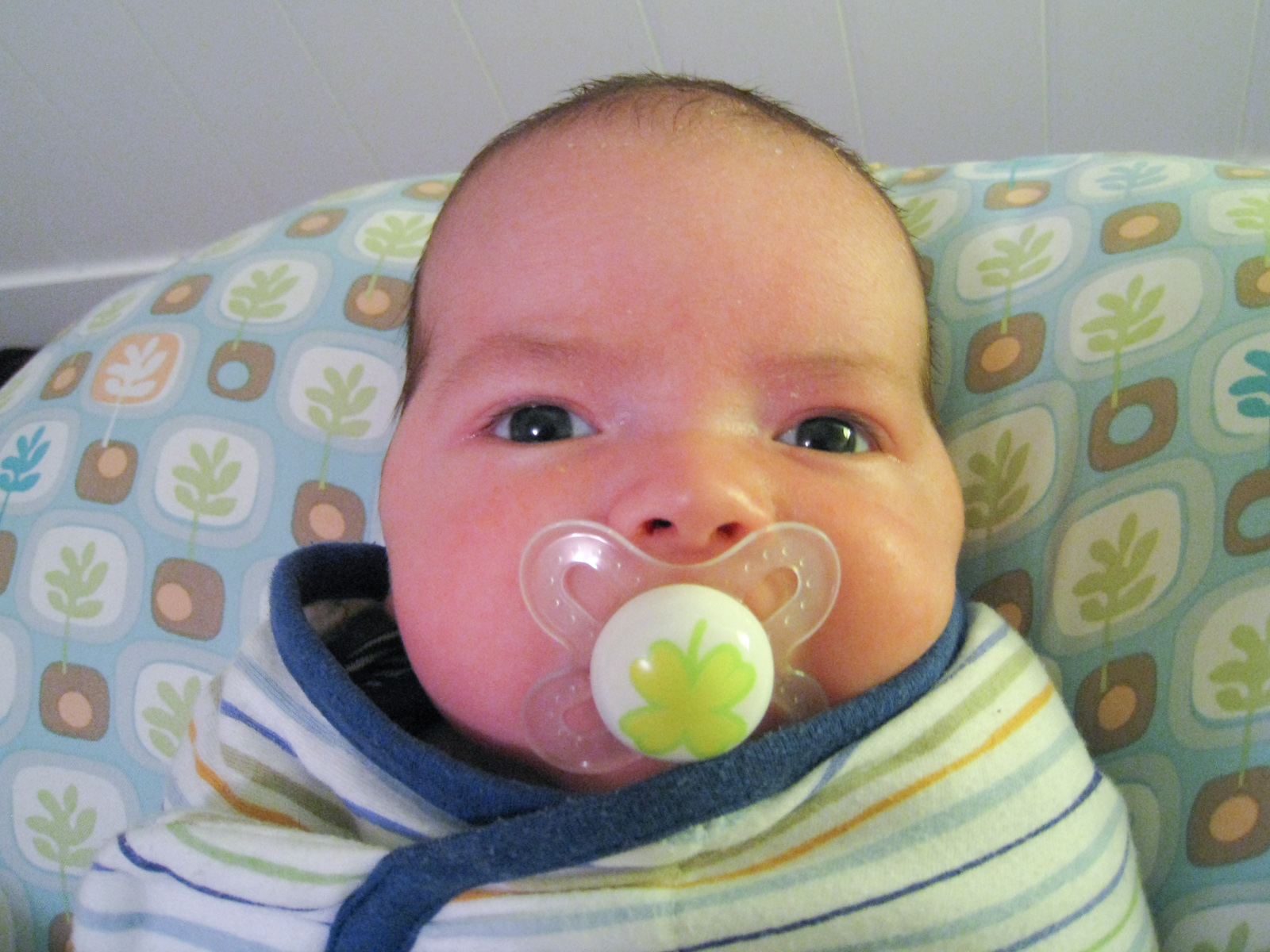 baby boy max, close-up with a pacifier, sits on a Boppy