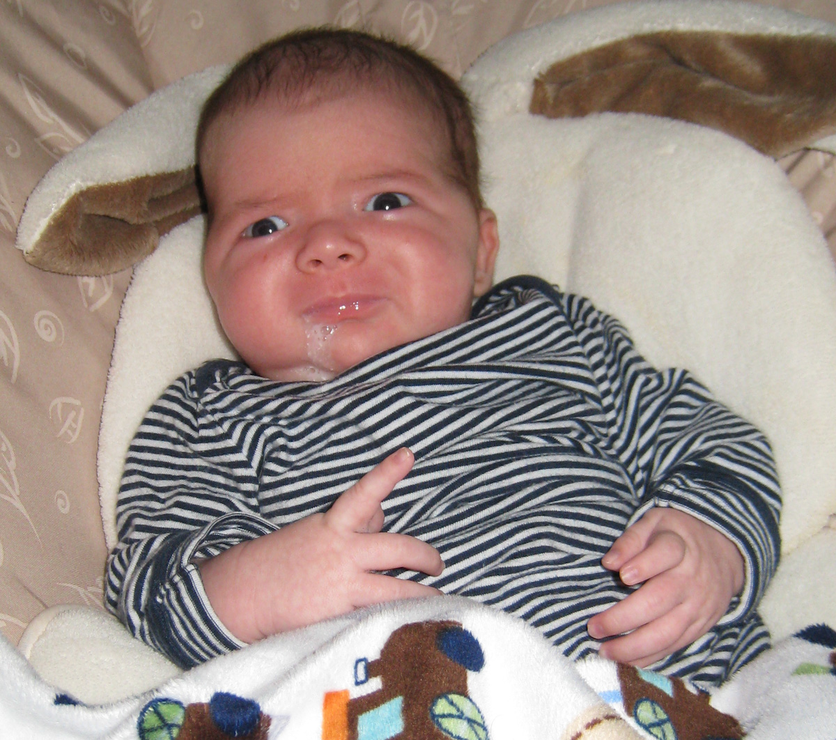baby boy max, wearing a striped shirt, spits up while sitting in a My Little Snugabunny Baby Bouncer