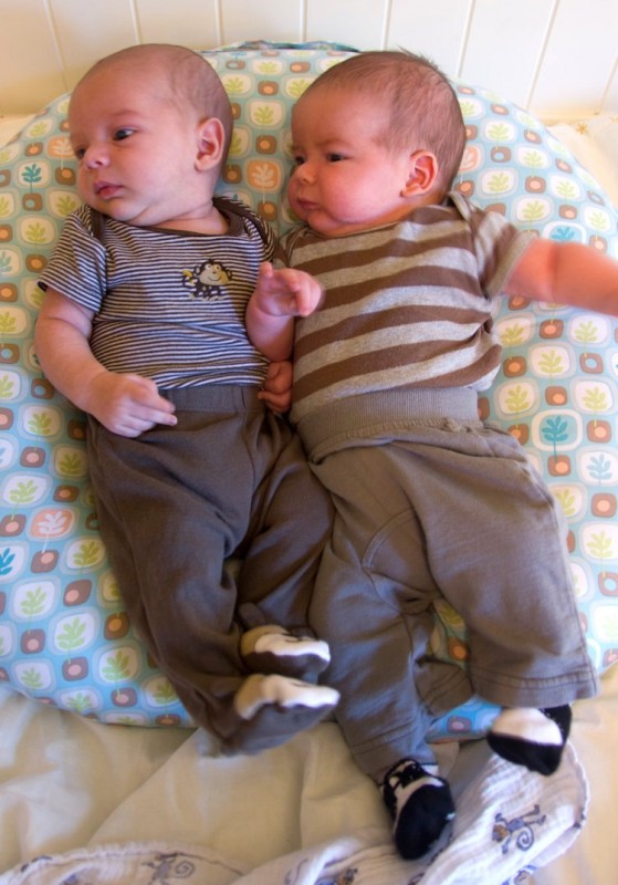 twin | The Daily Swaddle