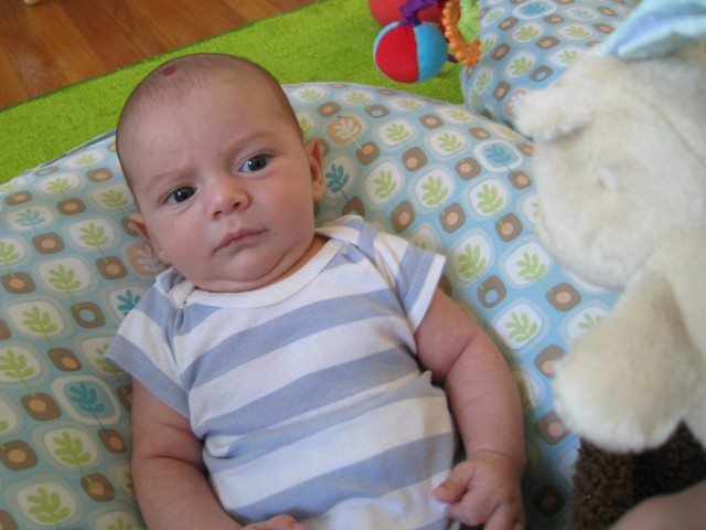 baby boy Sam, sitting on a Boppy Newborn Lounger looks up suspiciously at a small stuffed bear held above him