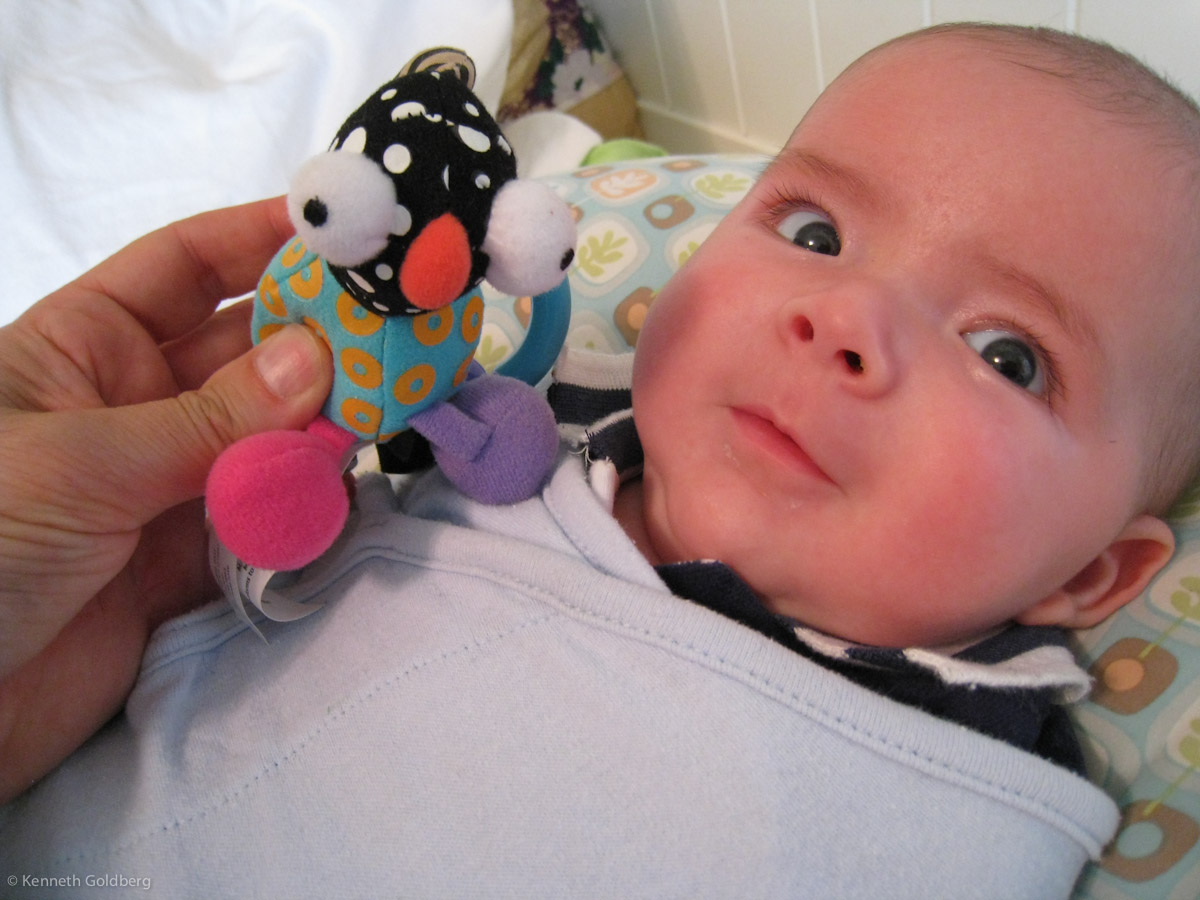 baby boy max, swaddled, comes eyeball to eyeball with a crazy bug-eyed toy