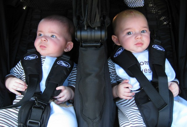 twin baby boys, brothers max and sam, take their first spin in a City Mini stroller on a sunny day